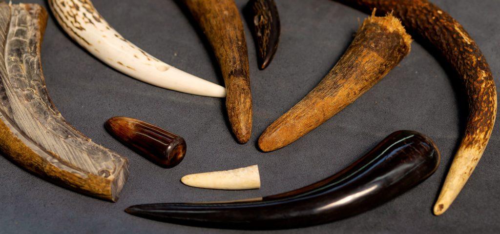 lar-accessori-moda-slide-home-corno-materiali-naturali